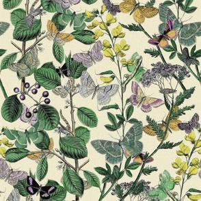 Springtime In The Butterflies ~ Garden ~ Brillig