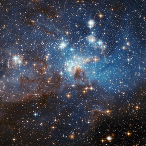 HD Star-Forming Region LH 95 in the Large Magellanic Cloud