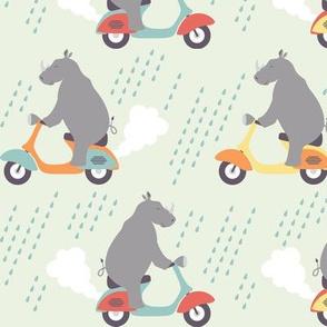 Rhinos in the Rain