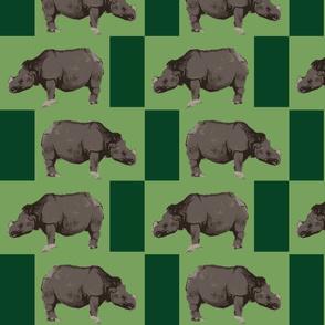Rhino March