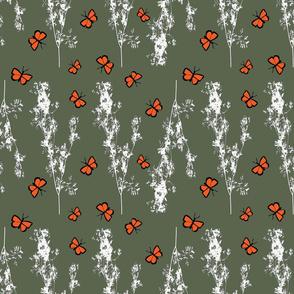 A Broken ZigZag of Cilantro with Butterflies