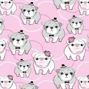 Bulldogs on pink background
