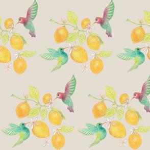 hummingbirds and lemons