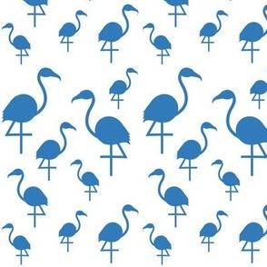 Flamingos in blue on white