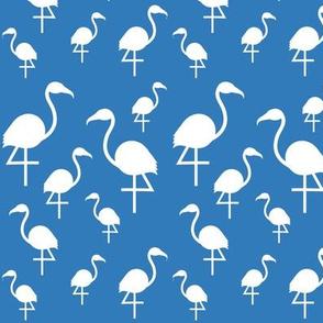 Flamingos in white on blue
