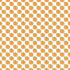 3321857-bundlesoffallpumpkinswhite-by-brightcreations
