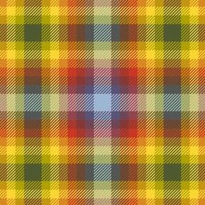 03326134 : tartan : autumncolors