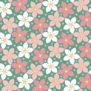 03326931 : S43CVflora : springcolors