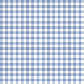 frosty blue gingham