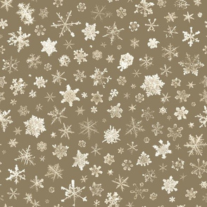 large photographic snowflakes on tan