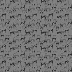 sighthound grey SMALL