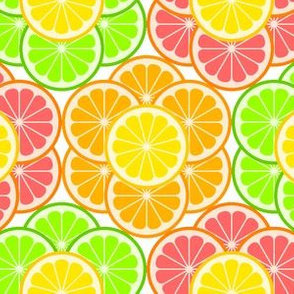 03350409 : citrus slice flowers 3