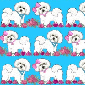 Bichon Frise, butterflies and roses