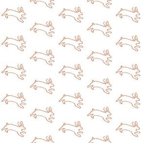 lullaby bunnies