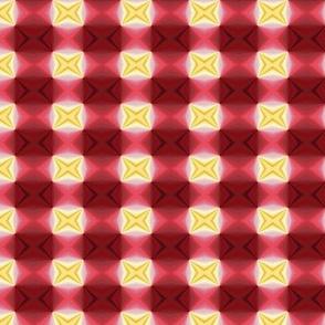 Hibiscus X's