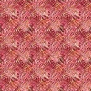 Hibiscus hatch