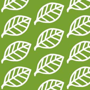 Leaf white on green