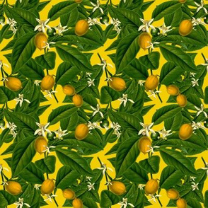 Lemon Botanical ~ Whist ~ Small