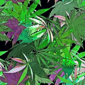 Deep Purple & Green Cannabis (R)