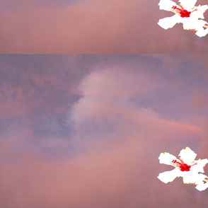 Trailing aloha flower with pink clouds