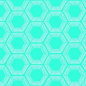 Hexagon Sketchy Mint