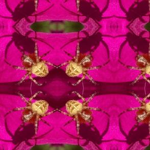pink geo spider - large
