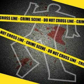 CRIME SCENE PILLOW