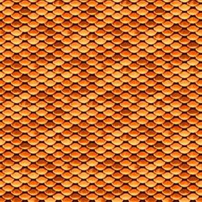 Scales ~ Goldfish