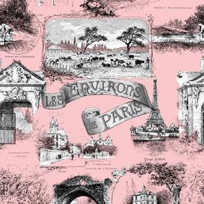 Les Environs de Paris ~ Toile de Jouy ~ Dauphine