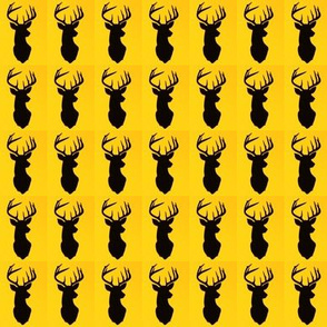 Stags Head Boxed Yellow