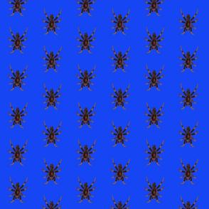 Spider Cobalt Blue