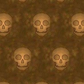 Ancient Skulls on Brown