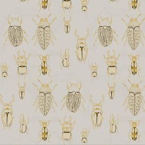 beetle-o