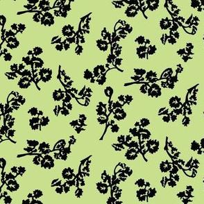 ShadowFoliage-Celery