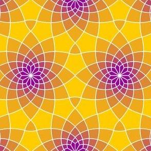 03423574 : SC3spiral : tropic