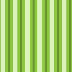Stripe I - Small