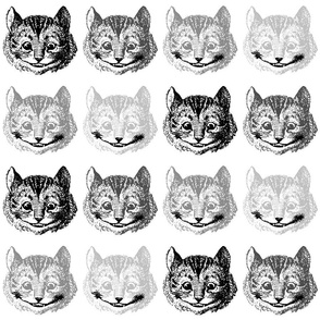 3432881-disappearing-cheshire-cat-on-white-by-katkett
