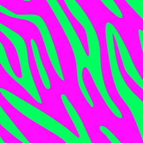 Pink and Green Zebra