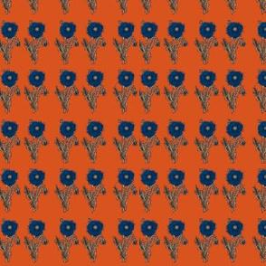 Calico Poppy- Orange
