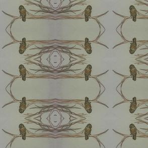 mirrored owls
