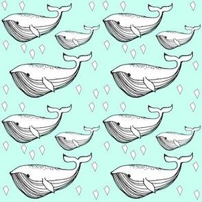 mint whale - elvelyckan