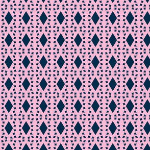 Architectural Elements in Udaipur - indigo and pink