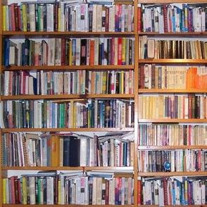 bookshelvestwo