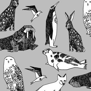 winter animals // arctic and antarctic animals winter animal snowy owl polar bear penguins