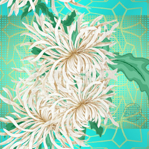 Japanese_spider_mums_4200_X_3150