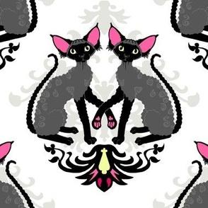Devon Rex Cat Damask