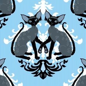 Devon Rex Cat Damask blue