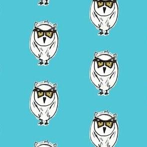 Owl in Aqua