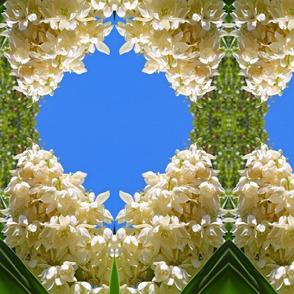 Blue Sky Cactus Flower