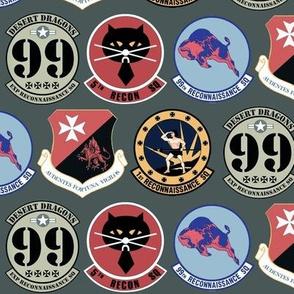 U-2 Squadron Patches Gray